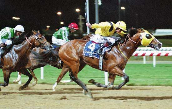 Horse Racing Most Popular Sports in United Arab Emirates