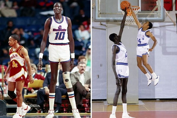 the NBA Tallest Player